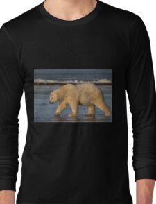 STOCK ~ Polar Bear #5 - Strolling On Ice Long Sleeve T-Shirt