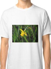 Tete s Tete Daffodil Classic T-Shirt