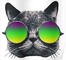 Mardi Gras Cat Poster