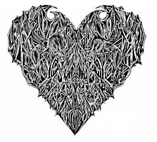 Valentines Heart White Photographic Print