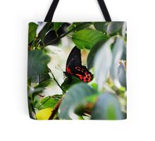 Butterfly in Leaves Tote Bag