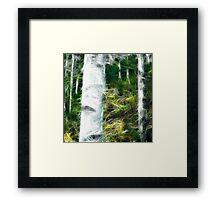 fractal of a fraction of forest Framed Print