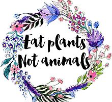 Eat Plants Not Animals  by ohdeer