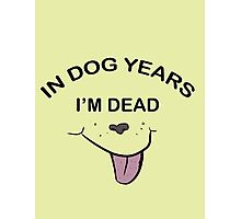In Dog Years I'm Dead Photographic Print