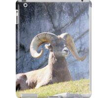 Wildlife iPad Case/Skin