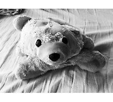 Weathered Bear Photographic Print