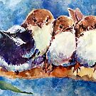 family group of fairy wrens by pamfox