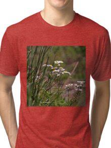 Mountain Daisies Tri-blend T-Shirt