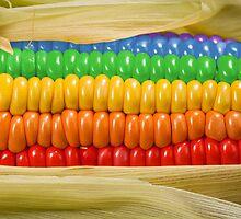 Rainbow Corn by Kitty Bitty
