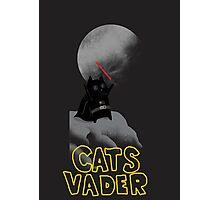 CATS WARS Photographic Print