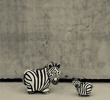 Zebras - Out of Context by LOREDANA CRUPI