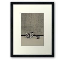 Zebras - Out of Context Framed Print