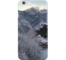 Organ Mountains iPhone Case/Skin