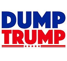 DUMP TRUMP 3 Photographic Print