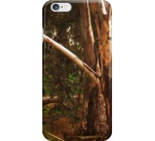 Reaching Out By Lorraine McCarthy iPhone Case/Skin