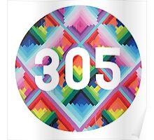305 miami wynwood walls Poster