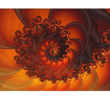 Decorative Shell Fractal  Photographic Print