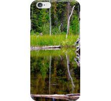 Glacier National Park 2 iPhone Case/Skin