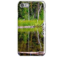 Glacier National Park 2 iPhone Case/Skin