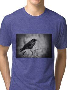 Whispering Wind Tri-blend T-Shirt