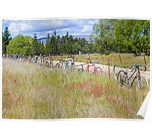 Bicycle Graveyard Poster