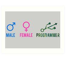 Programmers Art Print