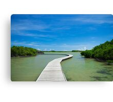 Road On Lake Canvas Print
