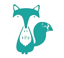 Monsieur Fox- Teal Photographic Print