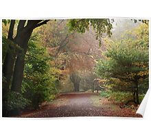 Dreamy Paths of Autumn Gold Poster
