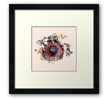 Nesting - Another Bird Has Found It's Nest Framed Print