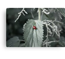Luck Among the Nettles Canvas Print