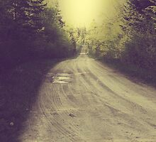 Vintage muddy traces on the forest road in the summer by juras