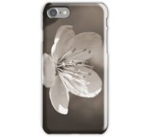 The Bloom of Another Day iPhone Case/Skin