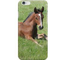 Thoroughbred Foal iPhone Case/Skin