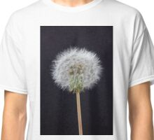 Close up of a Dandelion Seed Head Classic T-Shirt