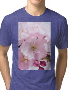 Pink Cherry Blossom Tri-blend T-Shirt