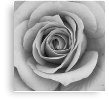 Noir Rose IV Canvas Print