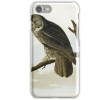 John James Audubon (Jean-Jacques Audubon) (), GREAT CINEREOUS OW iPhone Case/Skin