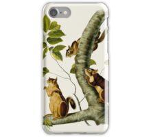 John James Audubon (Jean-Jacques Audubon) (1785 – 1851), DOUGLAS'S SQUIRREL, PLATE 48 FROM THE VIVIPAROUS QUADRUPEDS OF NORTH AMERICA iPhone Case/Skin