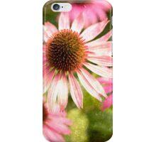 Autumn Echinacea iPhone Case/Skin