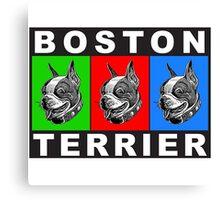 Pug Boston Terrier  Canvas Print