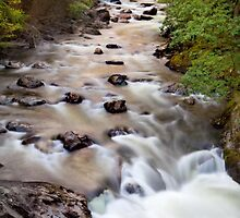 Welsh Rapids by Dave Hare