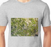The surface of the old boulders with moss close-up Unisex T-Shirt