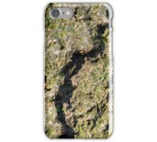 Surface of the old boulders with moss close-up iPhone Case/Skin