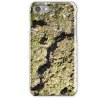 Old boulders with moss iPhone Case/Skin