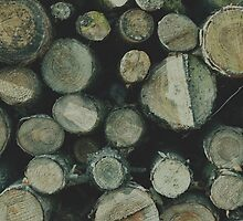 Fire wood texture. Soft hipster colors by aquapixel