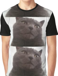 Funny cat Graphic T-Shirt