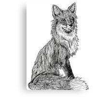 Ink Drawing Fox Canvas Print