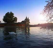 Beautiful view of the wooden house on an island on Lake Balaton. Sunset over the lake with swans by aquapixel