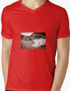 Aberfelin Cove, Pembrokeshire Mens V-Neck T-Shirt